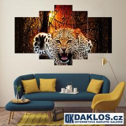 5x Obraz / Plátno / Plakát na zeď - Leopard / Síla