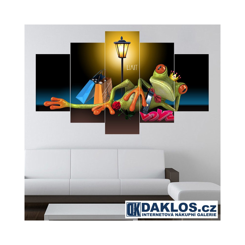 5x Obraz / Plátno / Plakát na zeď - Francie / Žába / Nákupy DKAP082541
