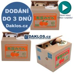 Kasička - Kočka v krabici