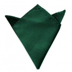 Společenský kapesníček / kapesník do saka - tmavě zelená