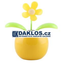 Solární květina / rostlina